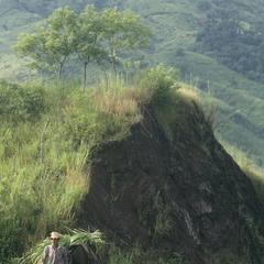 Deforested hills, east of La Ceiba
