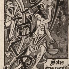 "Initial ""Y"" from Mater verborum"