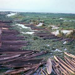 Dugout Canoes on Zaire (Congo River) Inlet