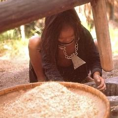 Girl scooping rice