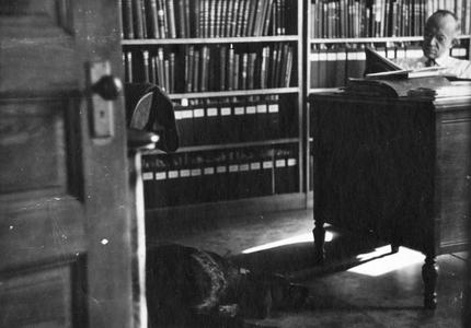 """In his University office, reading, with dog """"Gus"""" on floor, Madison, Wisconsin, ca. 1943"""