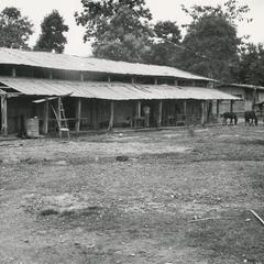 The old elementary school in Muang Meung with horses grazing on grounds in Houa Khong Province