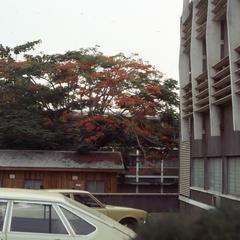 University of Ibadan building