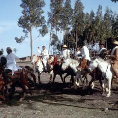 Men of Wedding Party Mounted on Horses in Front of Eucalyptus Trees