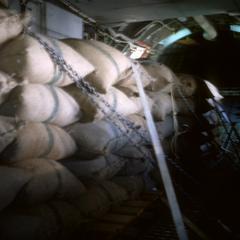 Airplane transporting rice