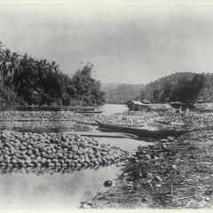 Coconut raft, Pagsanjan, Laguna, 1905-1915