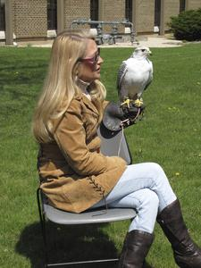 Trainer with hawk, Earth Day, Janesville, 2010