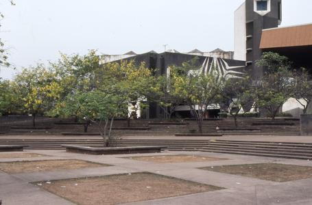 Obafemi Awolowo University campus trees