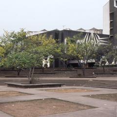 Obafemi Awolowo University campus trees