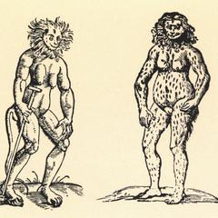 Ape (left) and Ourang Outang (right)