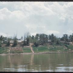 Cultivation patterns on the Mekong River