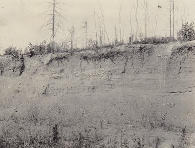 Douglas County pit