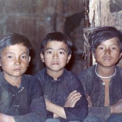Three White Hmong boys in Houa Khong Province