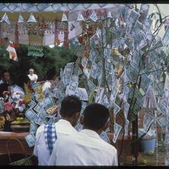 Ban Pha Khao : money tree--monk's bed