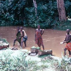 Women Soaking Cassava (White Manioc) near the Kwilu River
