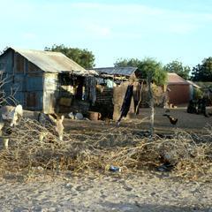 Urban Housing of Poor Immigrants