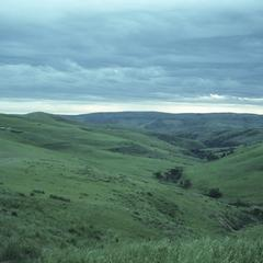 South Africa : scenery