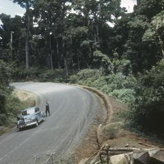 Virgin cloud forest with logging along Pan-Am highway