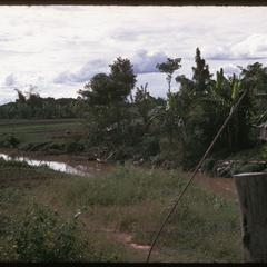 Khamsin's Tai Dam village : stream and fields