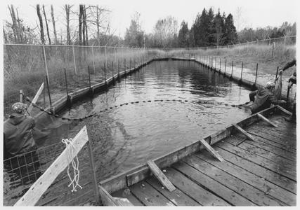 Channel of Strawberry Creek, near Lake Michigan