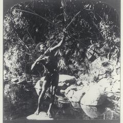 A Negrito huntsmen shooting his long bow, 1907