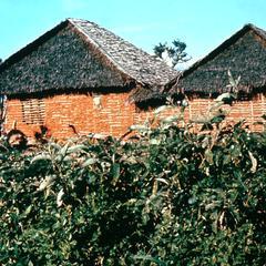 Typical Coastal House