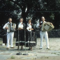 The Zivios