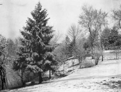 Snow covered yard at Burlington