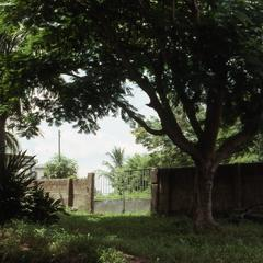 Grounds of Agbo Folarin's house