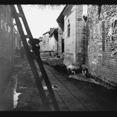 [Street scene]