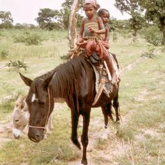 Fulbe Children on a Horse Traveling in the Bush