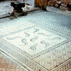 Fish Mosaic in Roman Ruins at Volubilis Near Meknes