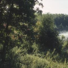 Mist rises from Onamia Lake