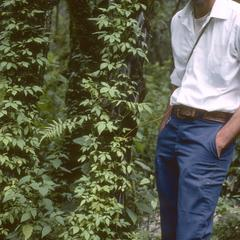 John Doebley with Solanum vine in cloud forest