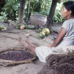 Indian woman in Palenque with cocoa beans