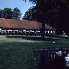 Restaurant with swans