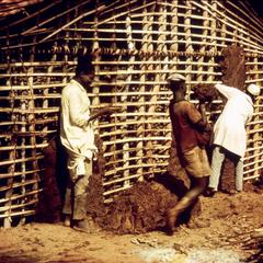 Wattle and Daub House Construction