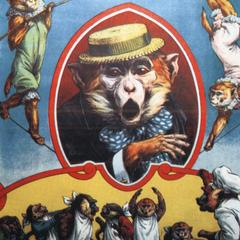 Capuchin Circus Print