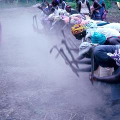 Women Preparing Rice Field