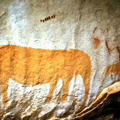 Cave Paintings at Zuur Vlakte
