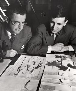 John St. Thomson and Hugh Iltis