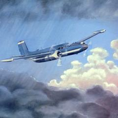 Oil painting : The Blue Goose