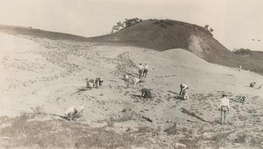 State geologist conference attendees collecting fossils