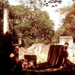 View of Ruins of Gedi