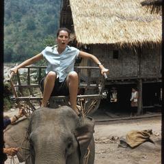 Pak Tha trip- Xayabury elephant