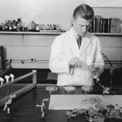 O. N. Allen in laboratory