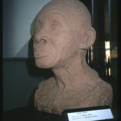 Bust- Abdias Do Nascimento