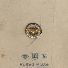 Commerce pin