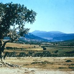 Ciskei (Arid Land)
