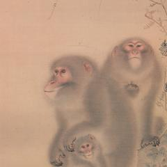 Japanese Macaque Print
